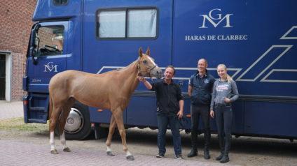 Felicie Bertrand Pferd